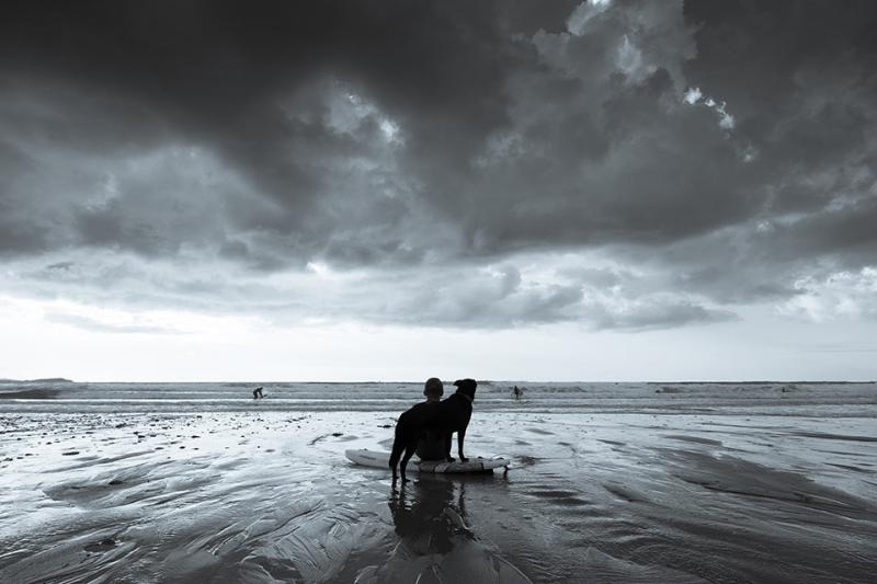 Boy and Dog waiting for the surf