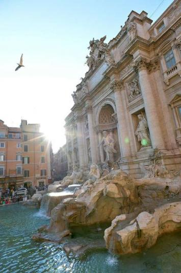 Roma - Trevi Fountain