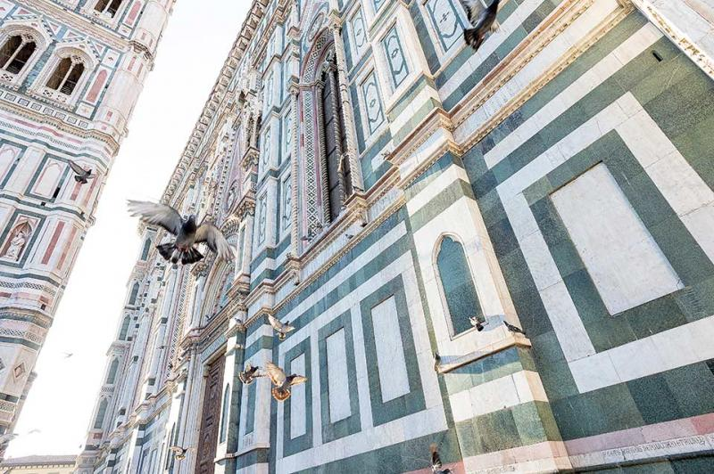 Firenze Duomo - Giotto's Campanile - Pigeons in Flight